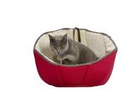 BULLE CAT