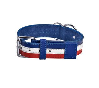 collier chien cuir bobby