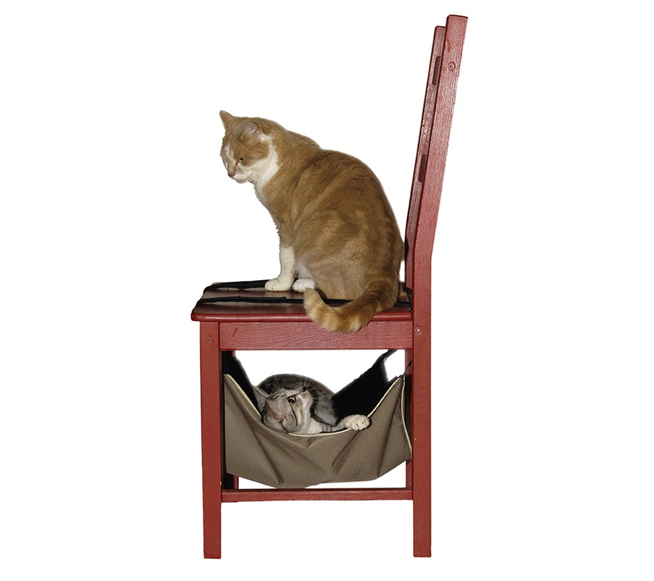 hamac calin habitat bobby accessoires pour chien et chat colliers manteaux pulls. Black Bedroom Furniture Sets. Home Design Ideas