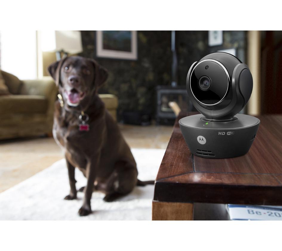 camera de videosurveillance interieure wifi surveillance bobby accessoires pour chien et. Black Bedroom Furniture Sets. Home Design Ideas