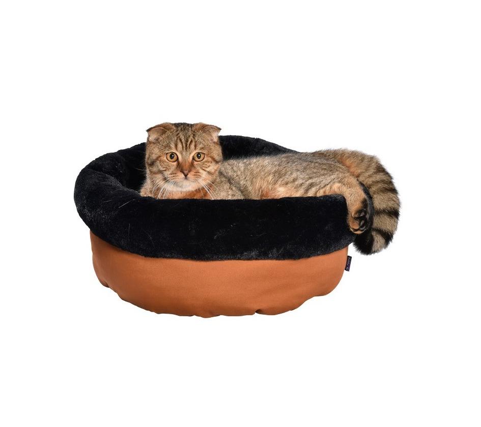 nid star chat bobby accessoires pour chien et chat colliers manteaux pulls. Black Bedroom Furniture Sets. Home Design Ideas