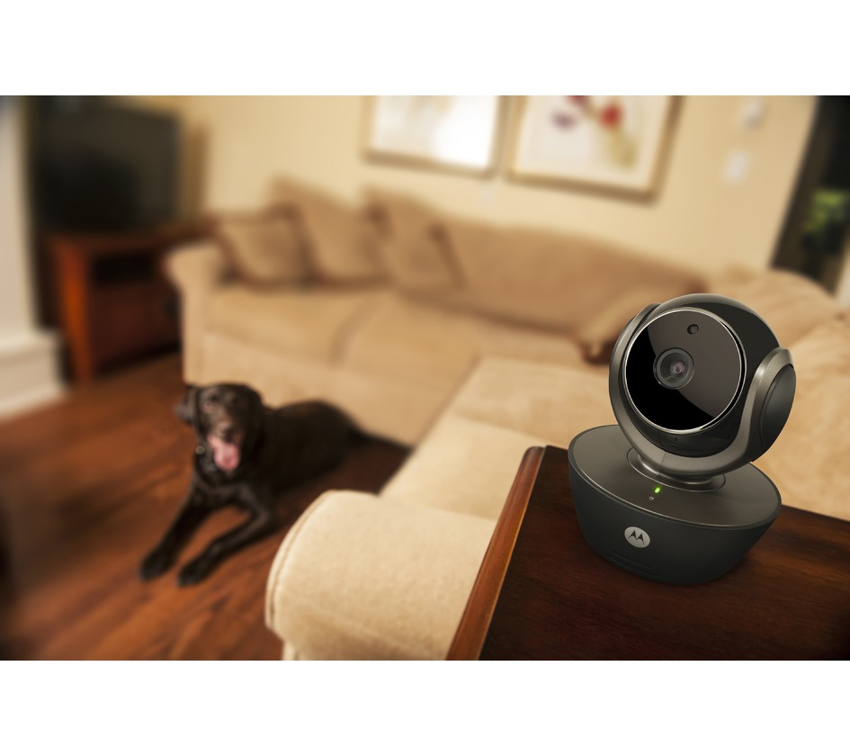 camera de videosurveillance interieure wifi high tech bobby accessoires pour chien et chat. Black Bedroom Furniture Sets. Home Design Ideas
