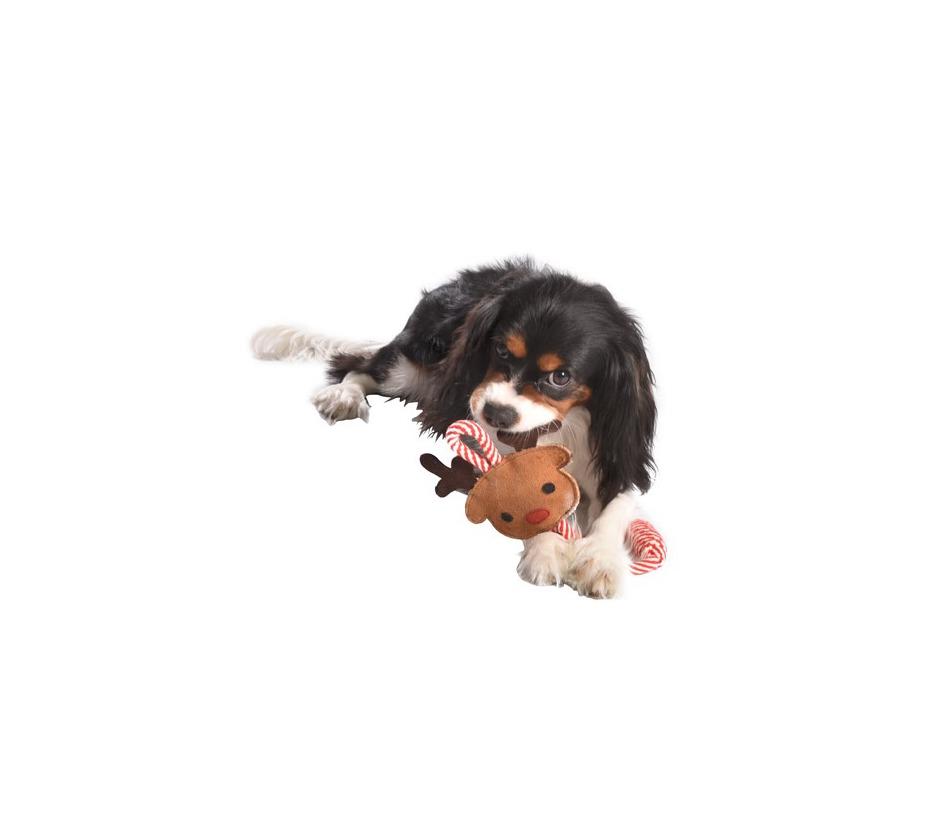 jeux renne jouets chien bobby accessoires pour chien et chat colliers manteaux pulls. Black Bedroom Furniture Sets. Home Design Ideas