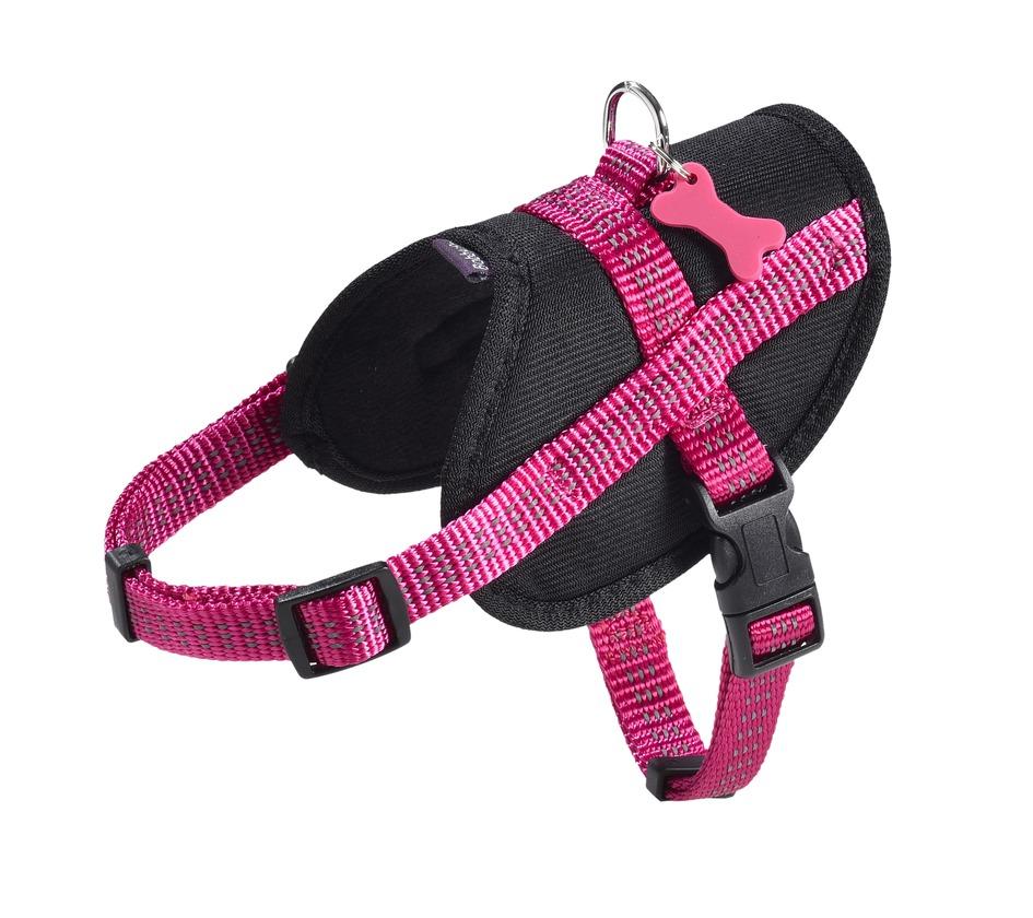 HARNAIS EASY SAFE - Nylon chien - Bobby - Accessoires pour chien et ... 97ca58024a16