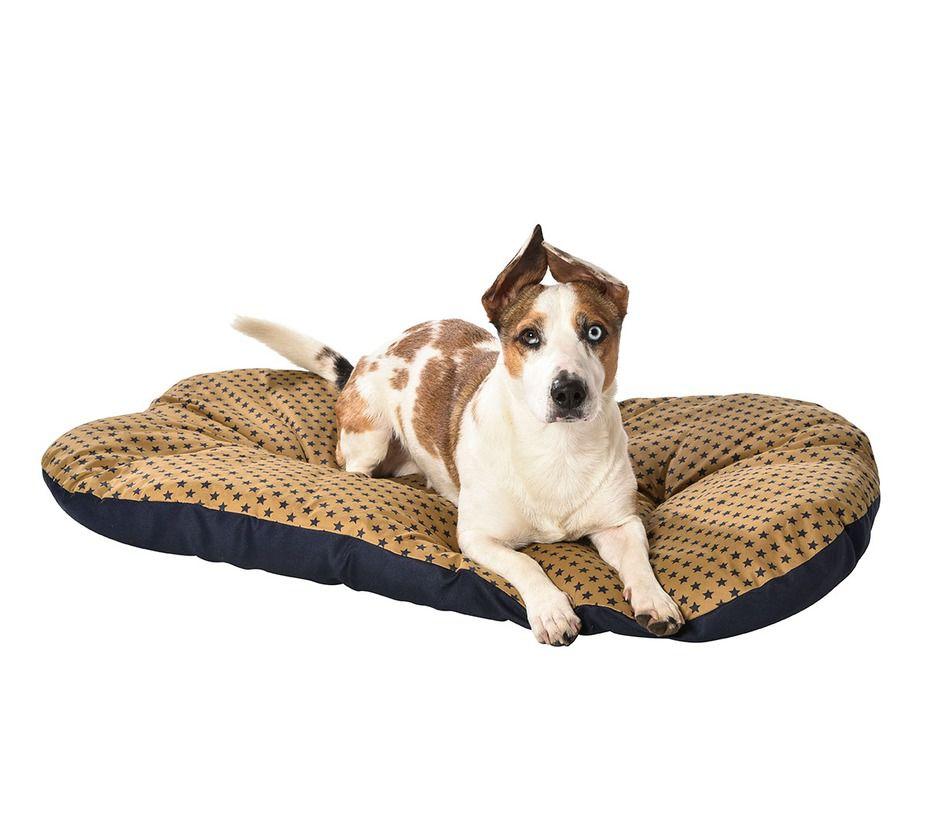 Coussin merlin coussins chien bobby accessoires pour - Coussin pour chien ...