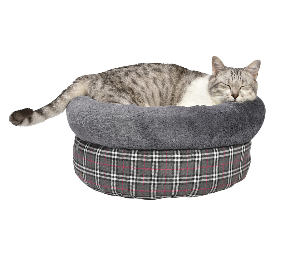 nid tartan chat bobby accessoires pour chien et chat colliers manteaux pulls. Black Bedroom Furniture Sets. Home Design Ideas