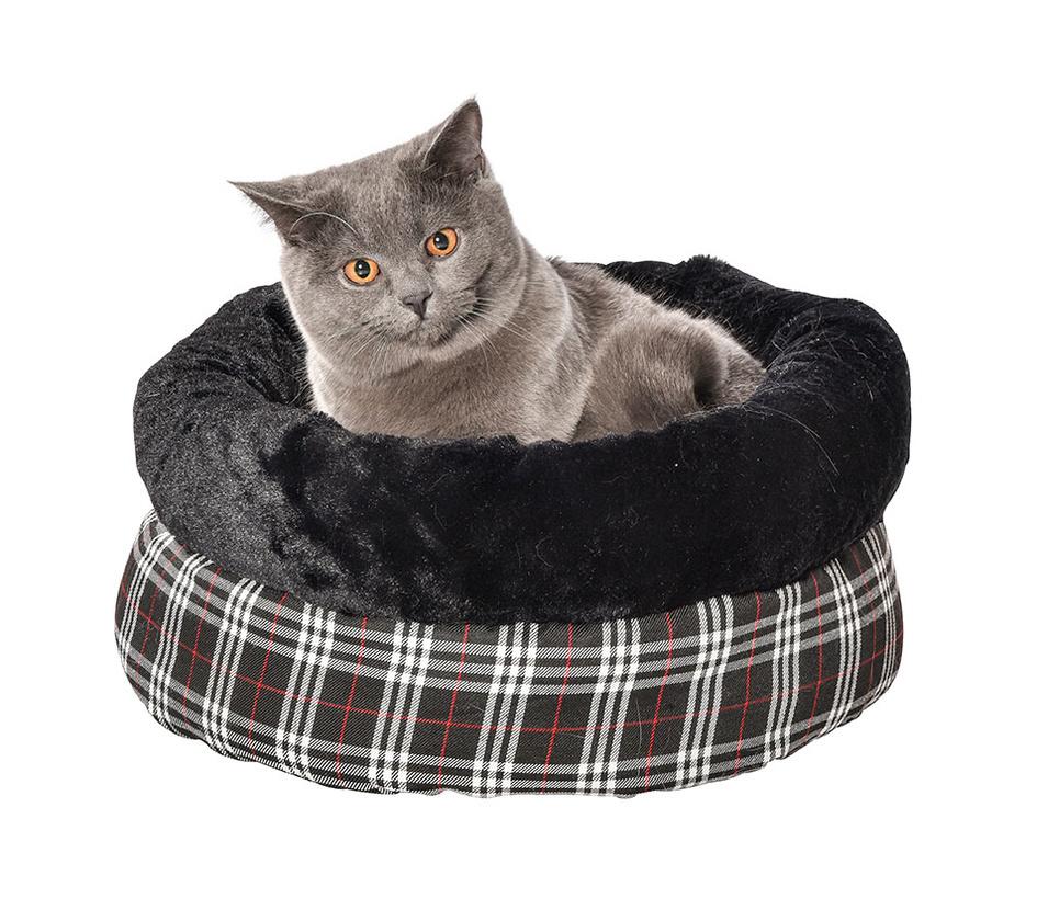 nid tartan chat bobby accessoires pour chien et chat colliers manteaux pulls. Black Bedroom Furniture Sets. Home Design Ideas