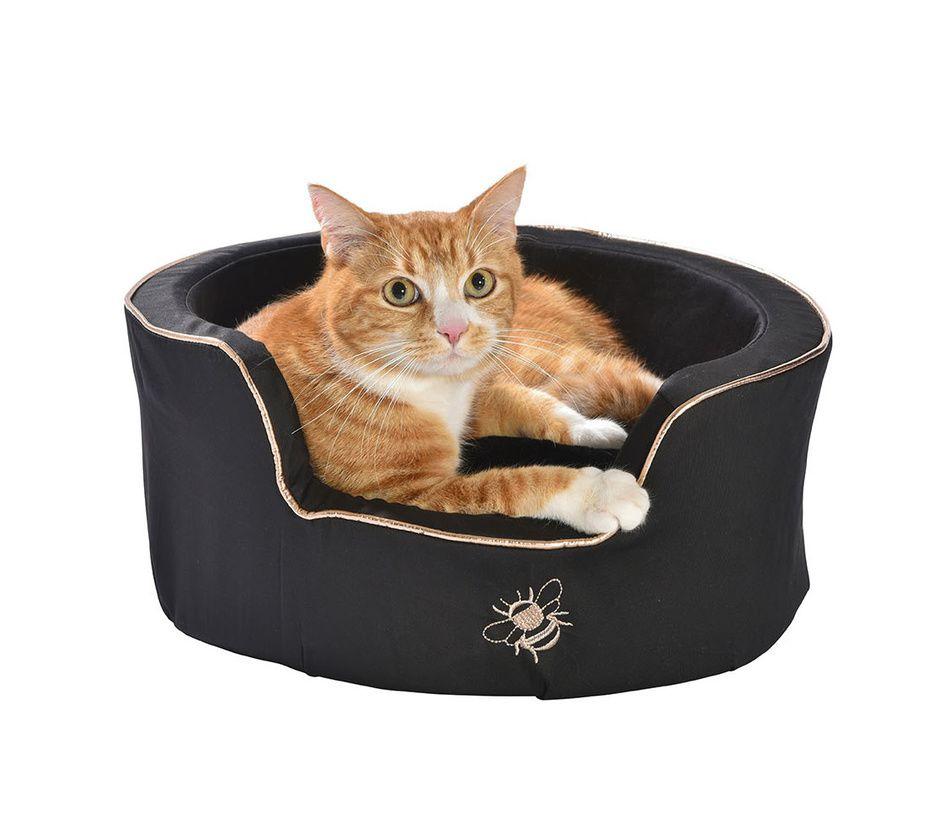nid bee chat bobby accessoires pour chien et chat colliers manteaux pulls. Black Bedroom Furniture Sets. Home Design Ideas
