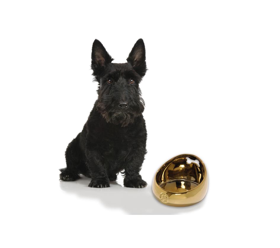 gamelle songe gamelles chien bobby accessoires pour. Black Bedroom Furniture Sets. Home Design Ideas