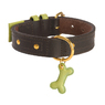 COLLIER URBAN DOG